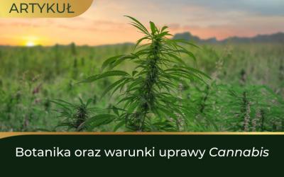 Botanika oraz warunki uprawy Cannabis