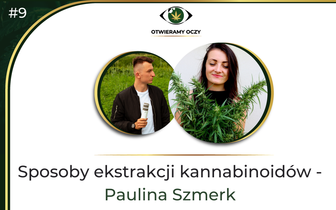 #9 Sposoby ekstrakcji kannabinoidów – gość Paulina Szmerk